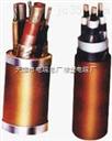 重型橡胶电缆YC橡胶电缆 YCW电缆价格供应商