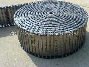 排屑器链板